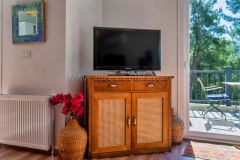 rent-a-forest-villa-with-pool-gocek-1
