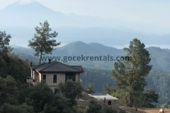 Secluded-Forest-Villa-with-Private-Pool-Shinrin-Yoku-6-1