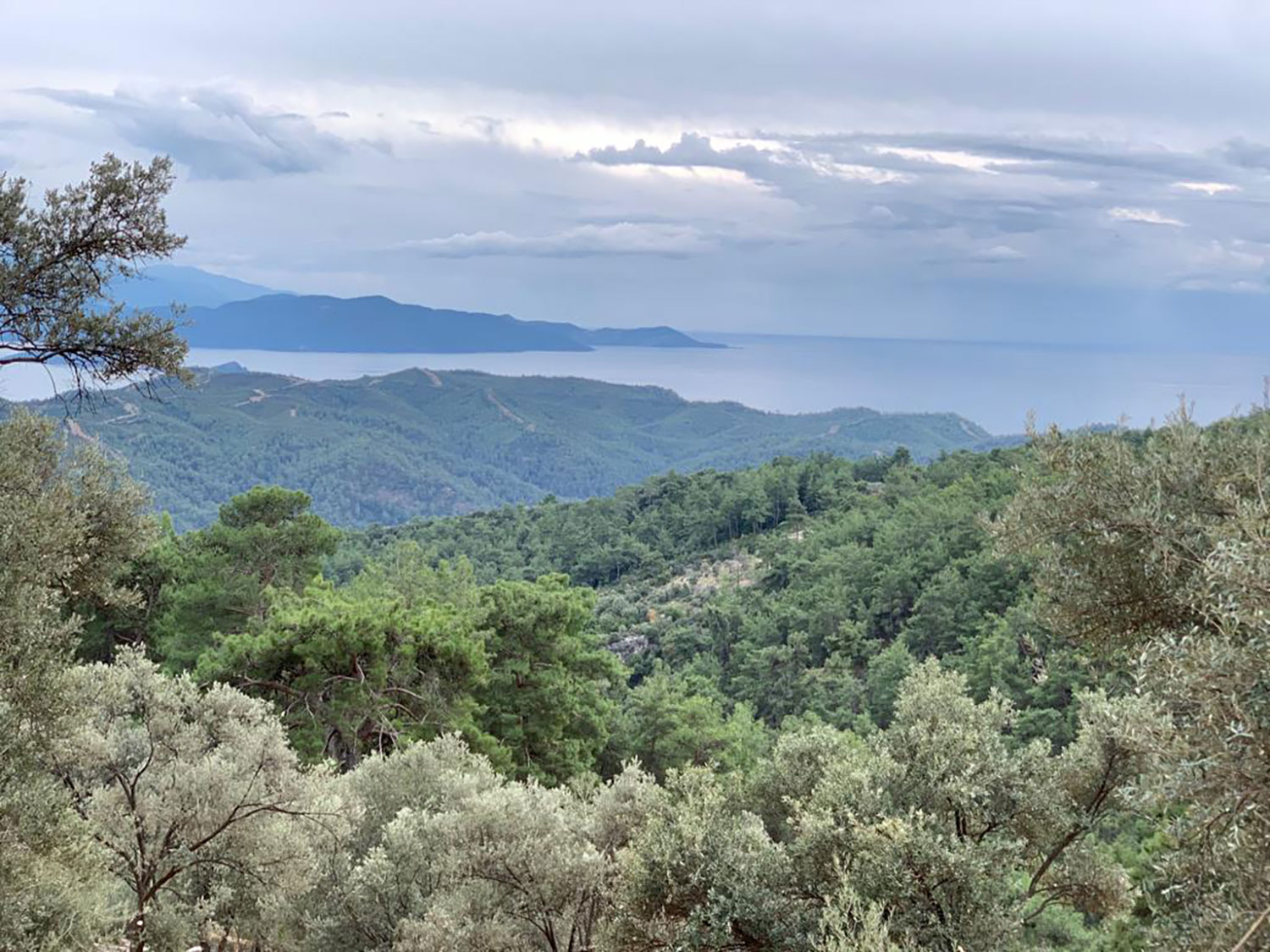 Land for Sale with Seaview in Fethiye Turkey